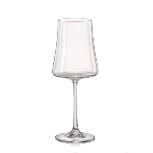 40862-560_xtra_crystalex_bohemia-crystal_pohare-na-cervene-vino-bordeaux_goblet_pieskovanie_gastroglass_tampoprint_epohare